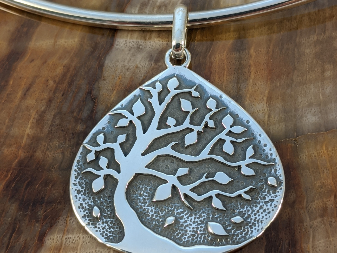 DeLong Studio Silver Jewellery is a business for sale in BC.